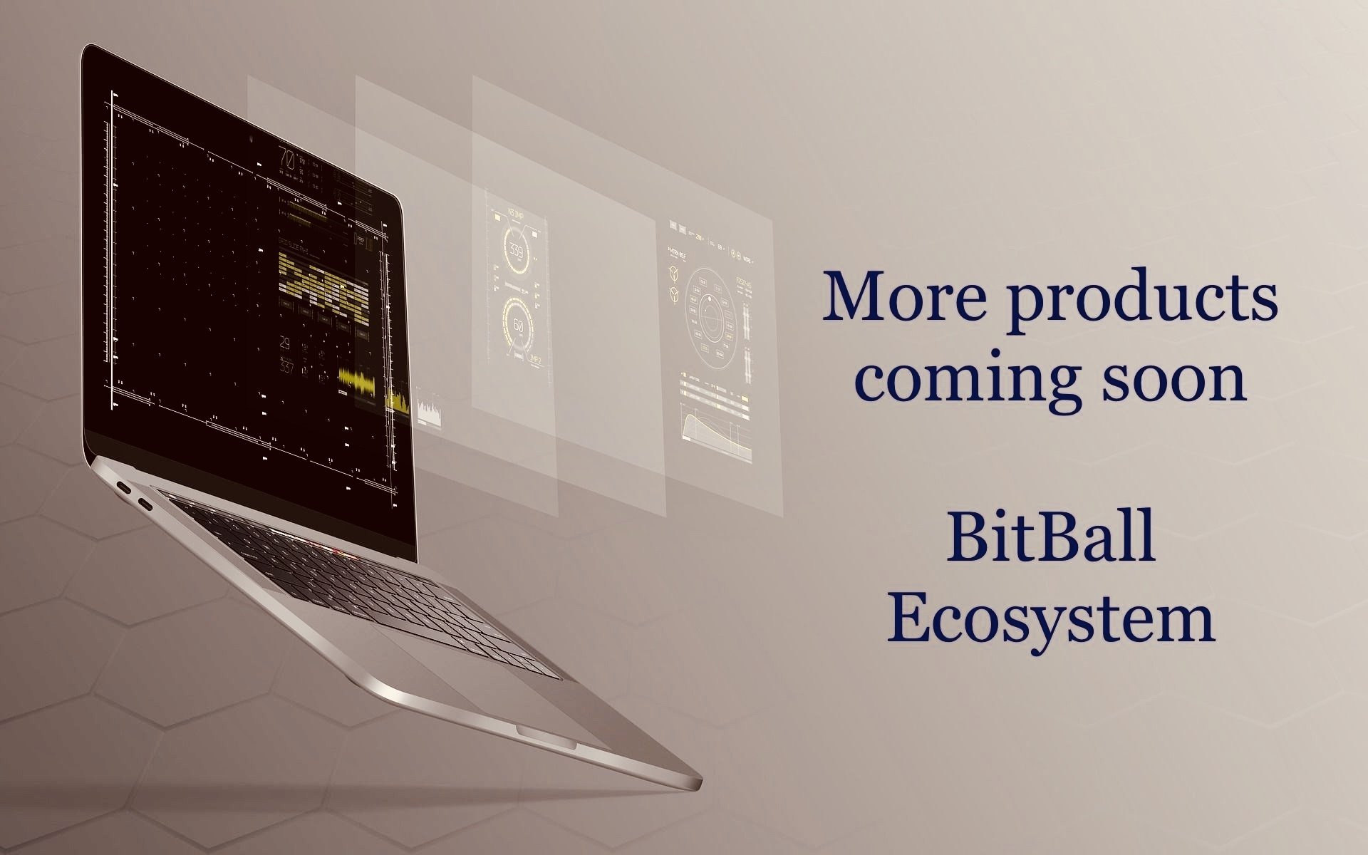 Bitball Ecosystem- A word from the CEO, Bitball (BTB).
