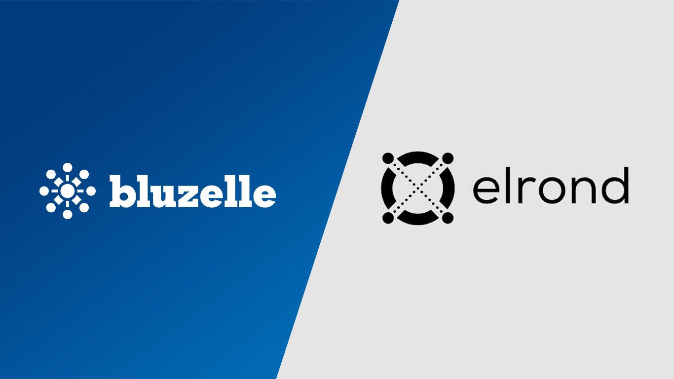 Top 40 CMC Elrond Partners with Bluzelle